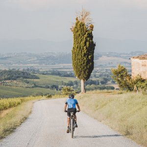 e-bike and Nobile wine
