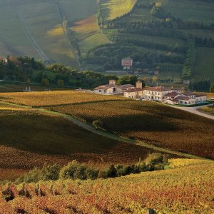 Wine and relax in Emilia Romagna's hill