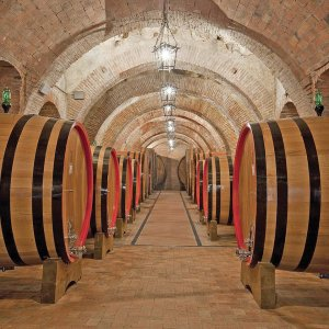 Wine tasting in the historic cellars of Montepulciano